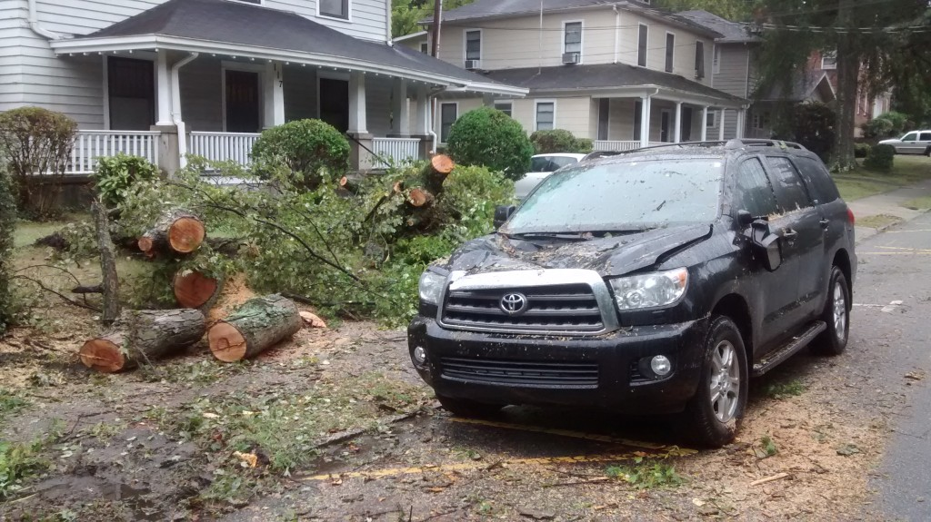 SUV damaged by falled tree on Mendenhall Street