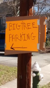Hand-lettered sign: Big Tree Parking