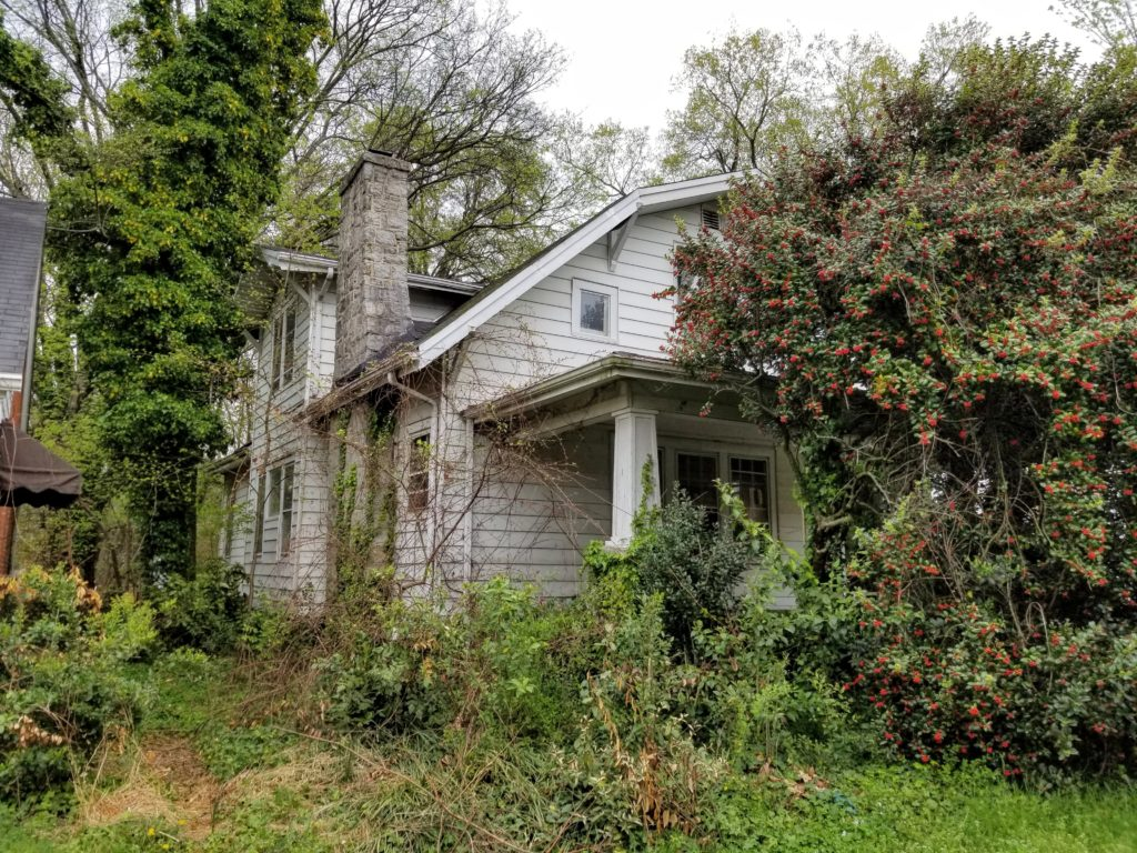 old house with overgrown vegetation